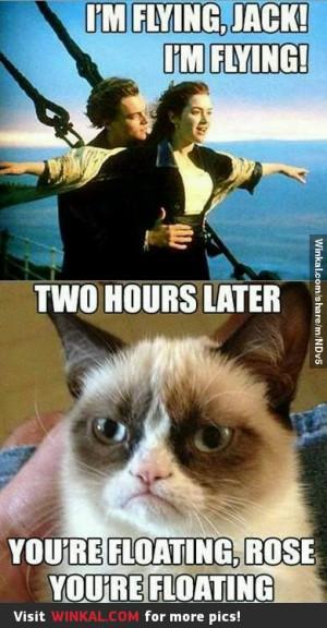 Obviously) Grumpy cat hates Titanic