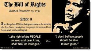 obama-gun-control-bill-of-rights.jpg