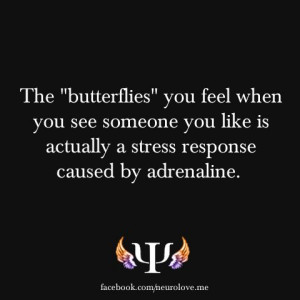 Butterflies = Love? Think again...!