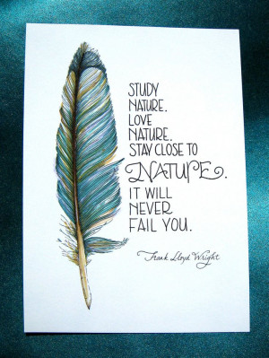 ... Feathers Art, Reduce Stress, Nature Quotes, Mothers Nature, Frank