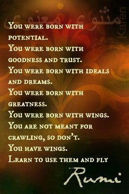 Learn to fly --- Rumi quote