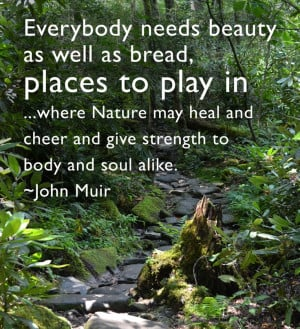 great John Muir quote