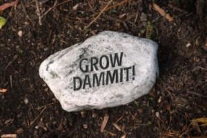 Funny Garden Rock Grow
