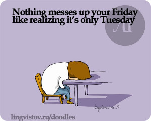 Funny Tuesday Quotes Pictures Zimg Picture