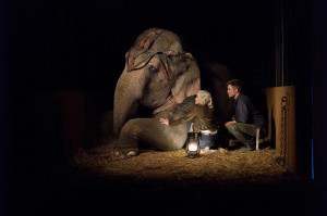 Water for Elephants new HQ WFE stills