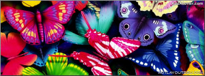colorful butterflies Facebook Cover