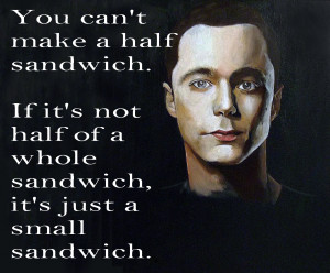 Sheldon Cooper Quotes Quotes from sheldon cooper