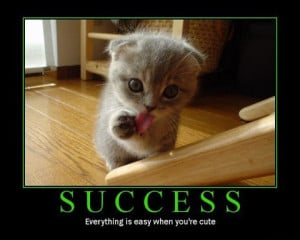 Motivational Posters on Cat Inspirational Poster 14 Large