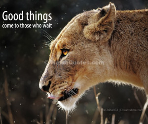 Lioness Quotes On may 1, 2013 by meme quotes