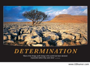 Determination quote with image US Humor - Funny pictures, Quotes, Pics ...