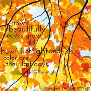Fall autumn quotes sayings image john burroughs