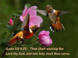 free christian wallpapers bible verses wallpapers faithful bible verse ...