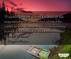 Rainforests Quotes