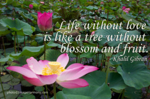 Life without love is like a tree without blossom and fruit.