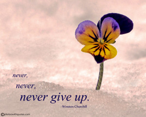 Never, never, never give up Quote