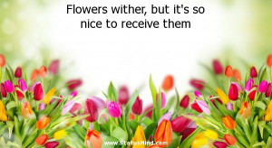 Flowers wither, but it's so nice to receive them - Positive and Good ...