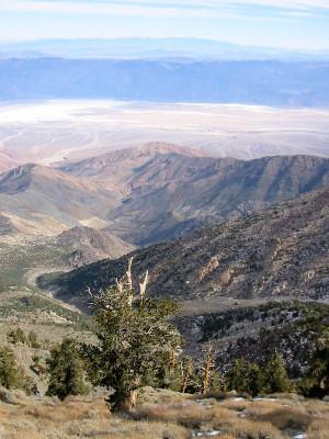 Telescope Peak Hiking Trail