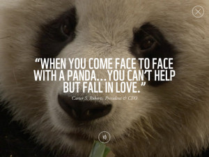 or endangered animals featured in WWF Together an app from the World
