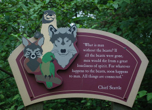 Chief Seattle Animal Quote Photograph - Chief Seattle Animal Quote ...