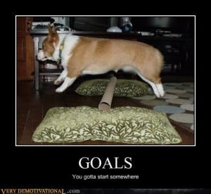 Goals: You have to start somewhere. It's a step, baby step, but a step ...