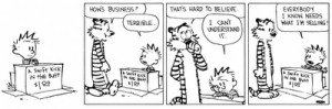 CALVIN AND HOBBES QUOTES PRINCIPLES