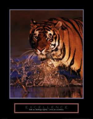 Excellence: Bengal Tiger