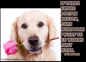 If there are no dogs in heaven . . .