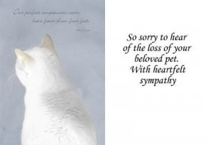 Sorry To Hear Loss Of Your Pet Sympathy Card