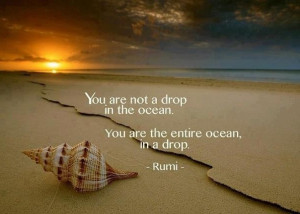 You are not a drop in the ocean. You are the entire ocean, in a drop.
