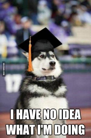Funny Graduation Quotes (22)