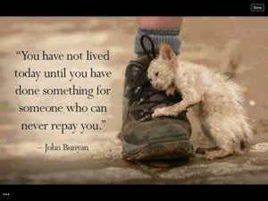 Helping others. Always help the animals! They are much loved by God ...