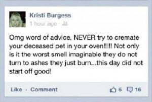 funny facebook status updates quotes
