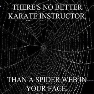 funny karate teacher