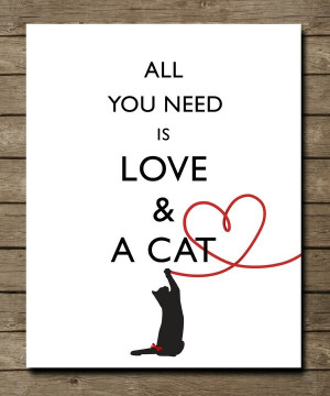 All you need is love & a cat