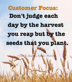 Customer Focus: Don't judge each day by the harvest you reap but by ...