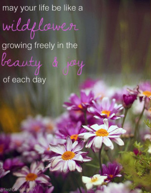 wildflower #quote #life #pretty