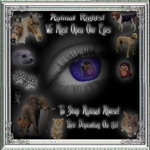 stand up for animals they need us as we need need them