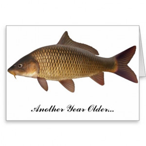 carp_fishing_birthday_card-r40d8a1ea54a14493846c35ca63862101_xvuak ...