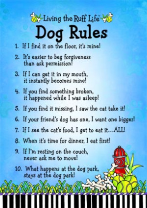 drd4dogs.com