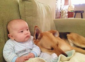 美国男婴卡特与宠物狗托比亲密相伴,照片萌煞网友 ...