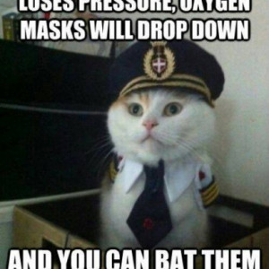 Funny Quotes About Airplanes Quotesgram