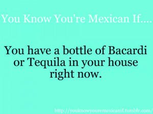 you know you are a mexican if march 13 2013 by rebecca2013