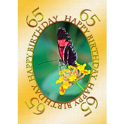 65th_birthday_butterfly_on_a_flower_greeting_card.jpg?height=250&width ...