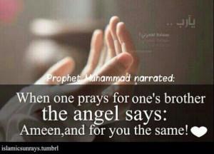 Thread: Prophet Muhammad (P.B.U.H.) quotes