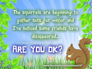 The squirrels are beginning to gather nuts for winter and I've noticed ...