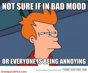 Not Sure If I'm In A Bad Mood