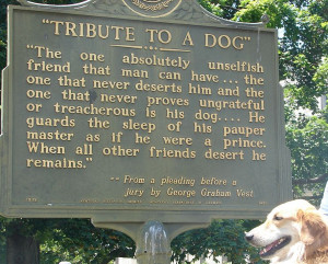 As Americans honor their canine kids during National Dog Week (Sept ...