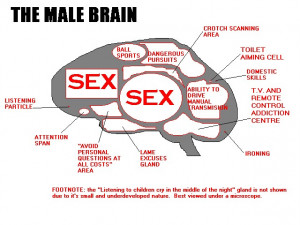 Men and Women's Brain