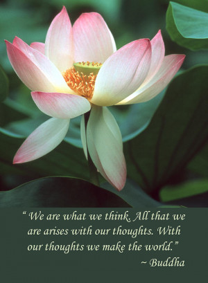Lotus Flower Buddha Quote Photograph
