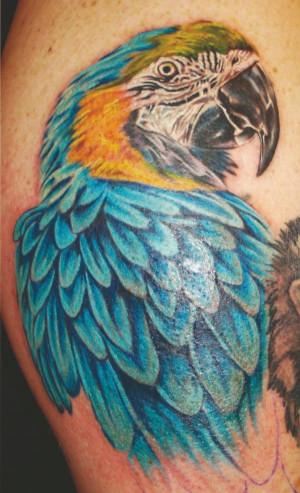 Cool Bird Tattoos